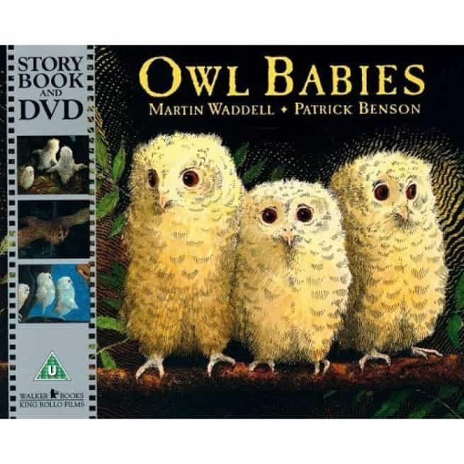 Owl Babies story book and DVD