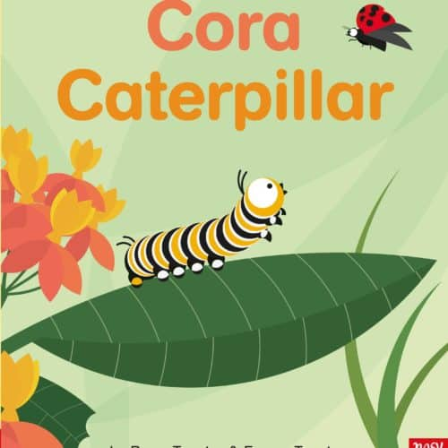 Cora Caterpillar, a life-cycle story book