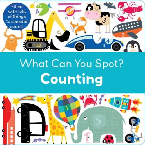 What Can You Spot My First Counting book
