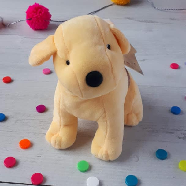 Set Of Dog Stuffed Animals, Spot The Dog Book And Toy Gift Set Books Pieces